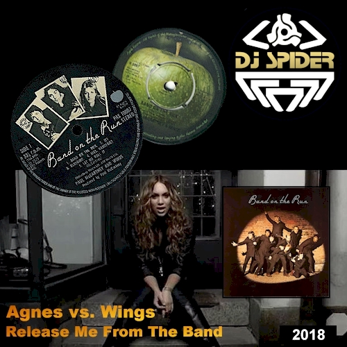 agnes_vs_wings2018.jpg